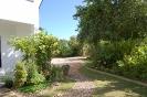 Garden Pictures_6